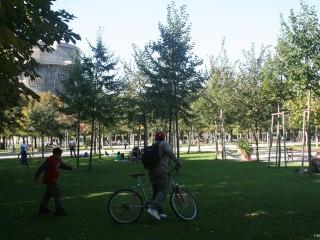 Парк Аугартен в Вене