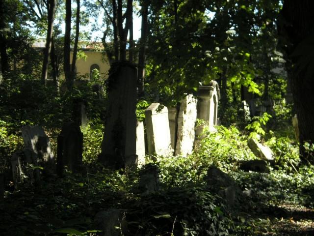 Еврейское кладбище Вены