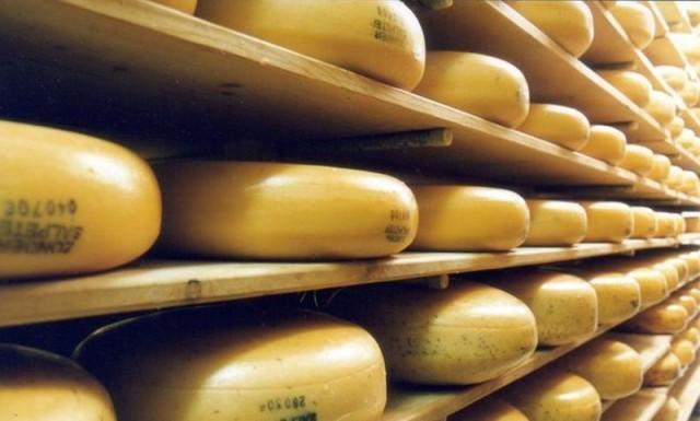 Альпийский сыр