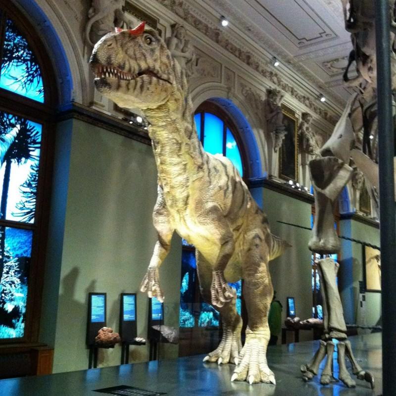 Естественноисторический музей (Naturhistorisches Museum) заново оформил Зал динозавров.