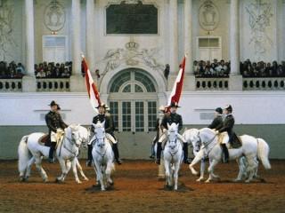 Искусство верховой езды в Австрии