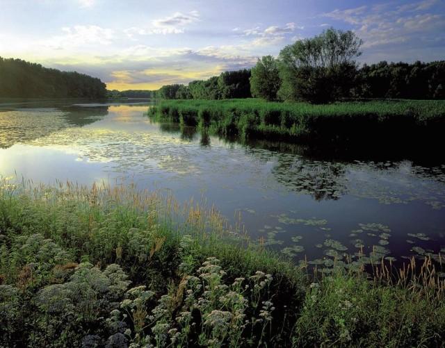 Национальный парк Донау-Ауэн (Nationalpark Donau-Auen)