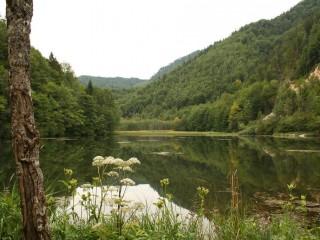 Калькальпен, национальный парк в Австрии