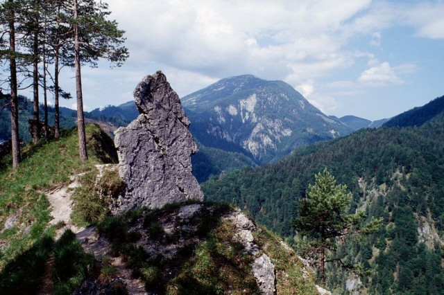 Национальный парк Калькальпен (Nationalpark Kalkalpen)