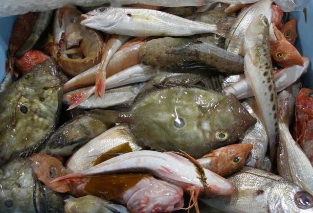 Рыбный ресторан Nautilus (Nautilus Fischrestaurant)