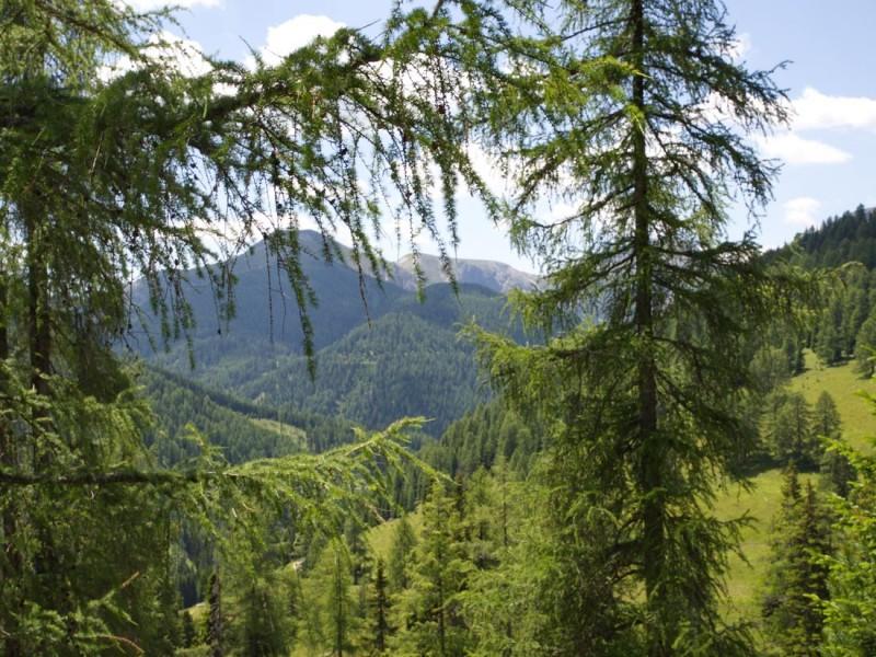 Национальный парк Нокберге (Nationalpark Nockberge)