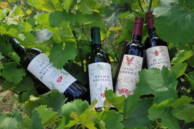 Био-вина – природное сочетание вкуса и качества