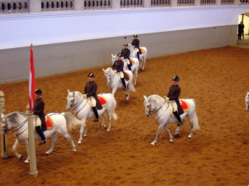 Испанская школа верховой езды (Spanische Hofreitschule)