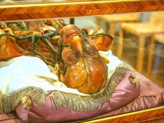 10 необычных музеев Вены