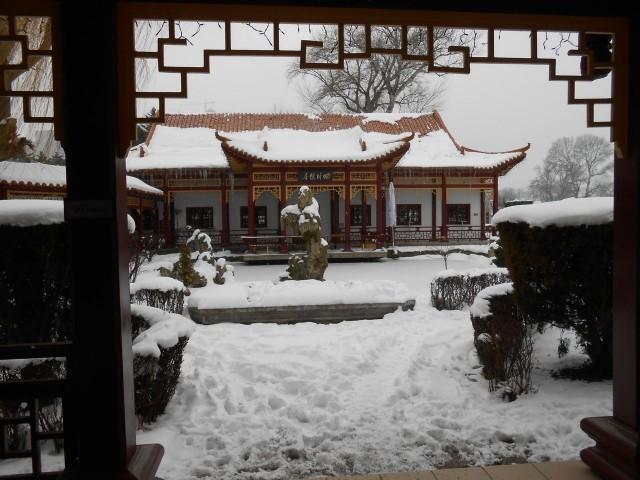 Китайский ресторан в Дунай парке