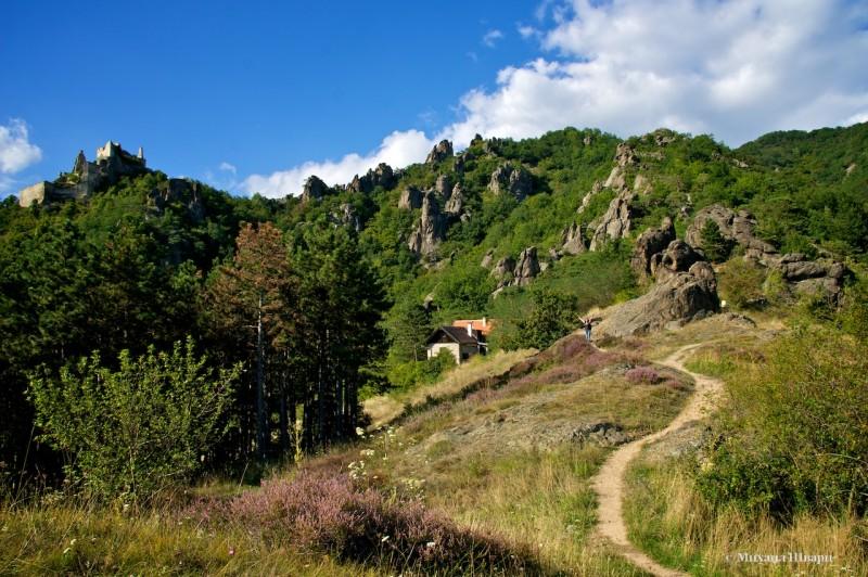 Извилистыми дорожками идем на соседнюю гору к крепости Дюрнштайн