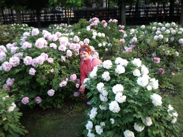 Вена. Я в парке Моцарта.
