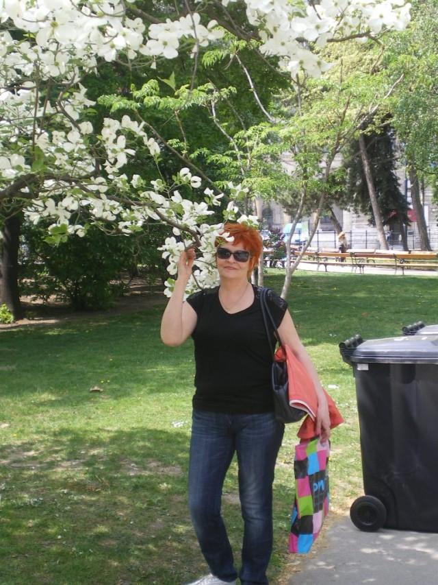 В парке Ратхаус