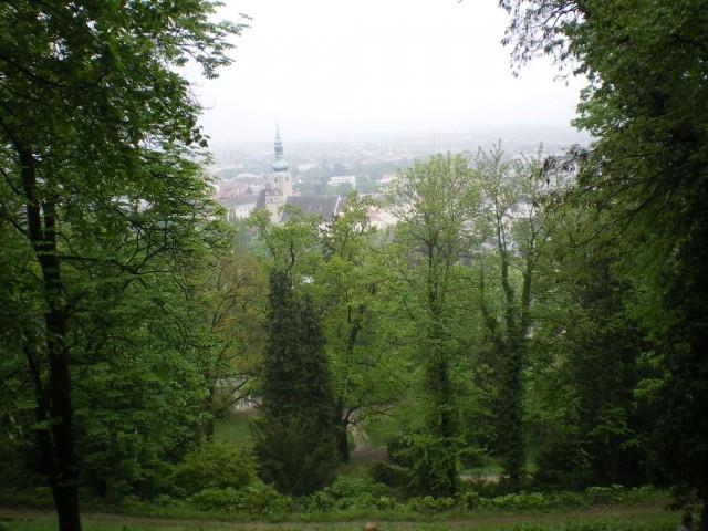Вид на Баден из венского леса (высота 700 м)