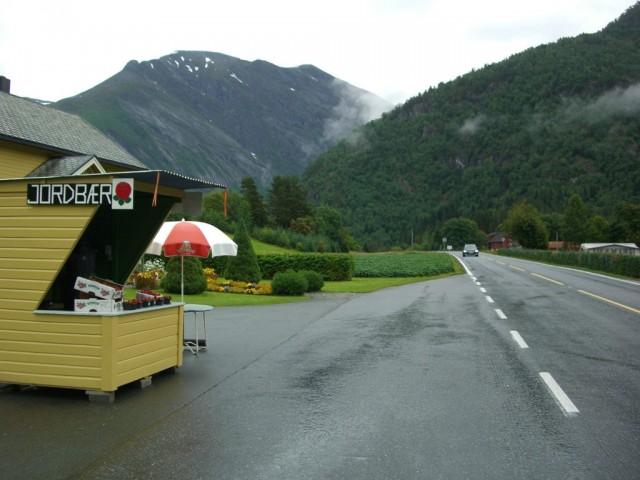 Норвегия, Здесь растет и продается клубника