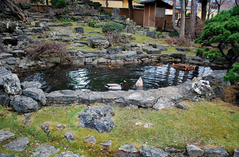 Японский сад (Japanischer Garten)
