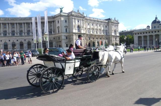 Венские фиакры (Fiaker in Wien)