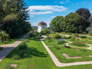 Ботанический сад Венского университета