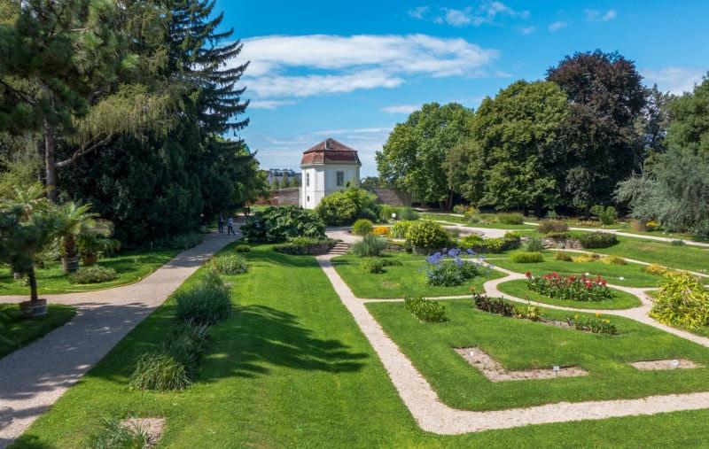 Ботанический сад университета Вены (Botanischer Garten der Universität Wien)