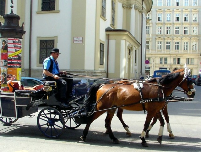 Площадь Святого Петра (Petersplatz)