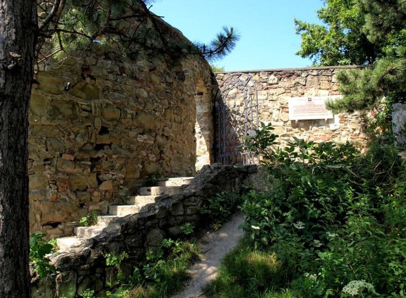 Руины замка на горе Леопольда (Burg am Leopoldsberg)