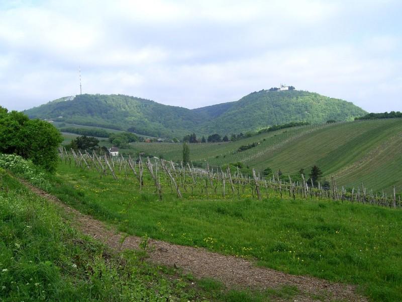 Вид на Каленберг (Kahlenberg) и Леопольдсберг (Leopoldsberg)