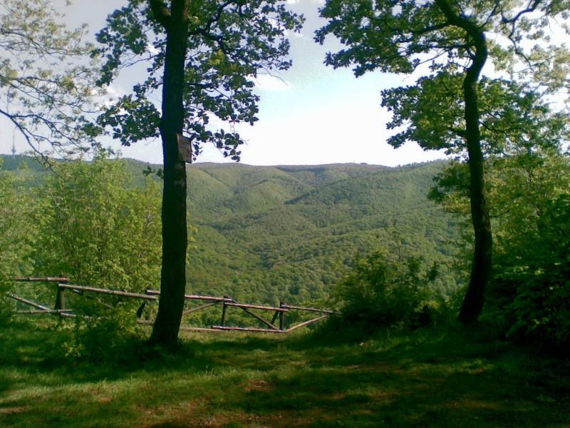 Фрушка-Гора – парк и заповедник