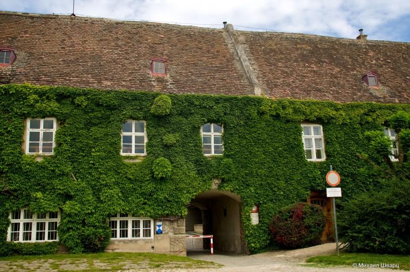 Дом из зелени