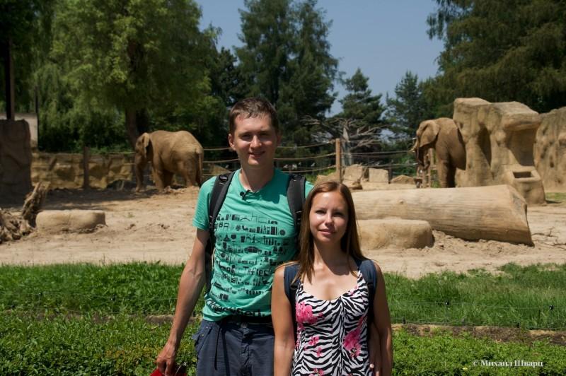 Мы со слонами