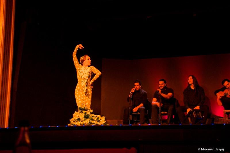 Дворец Фламенко в Барселоне