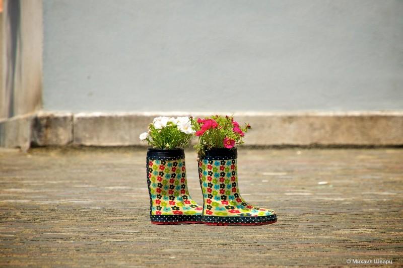 Сапоги с цветочками