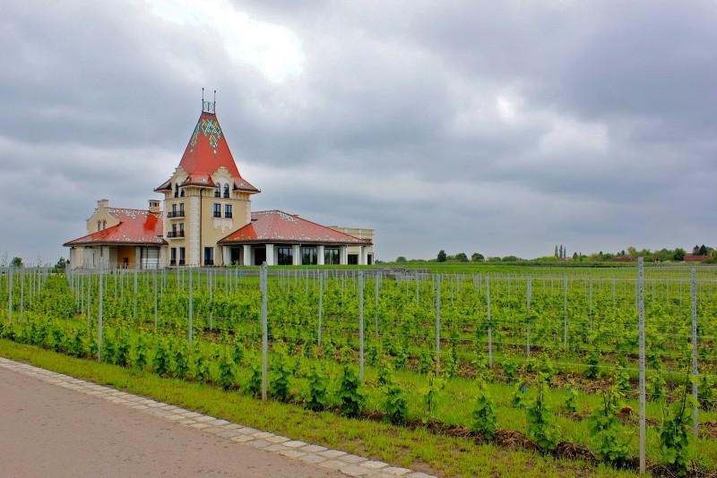 Винодельня Звонко Богдан