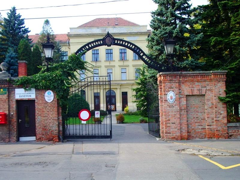 Факультет лесного хозяйства