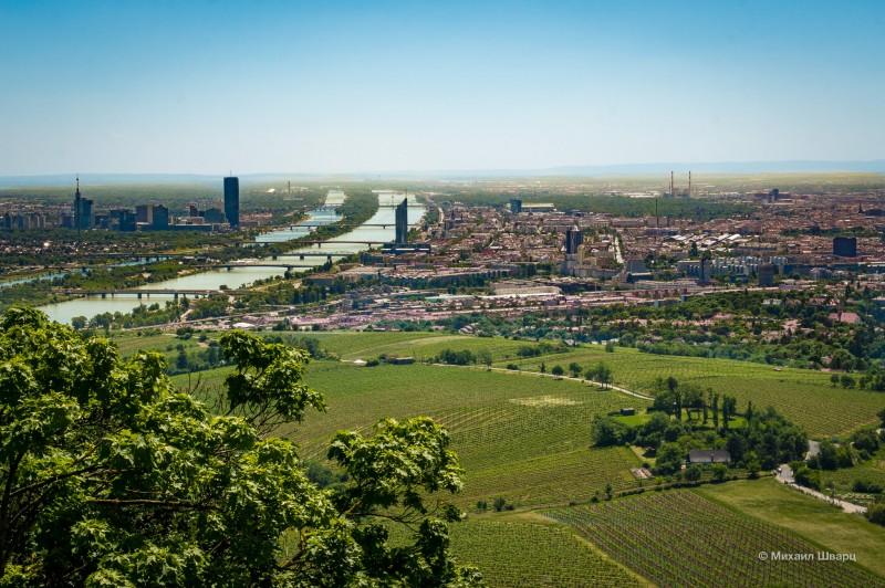 Панорама Вены с горы Каленберг