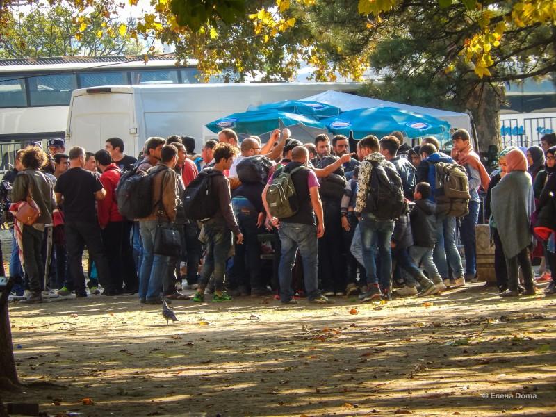 Беженцы в Белграде