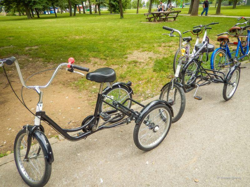 Есть довольно оригинальные и устойчивые экземпляры велосипедов для взрослых.
