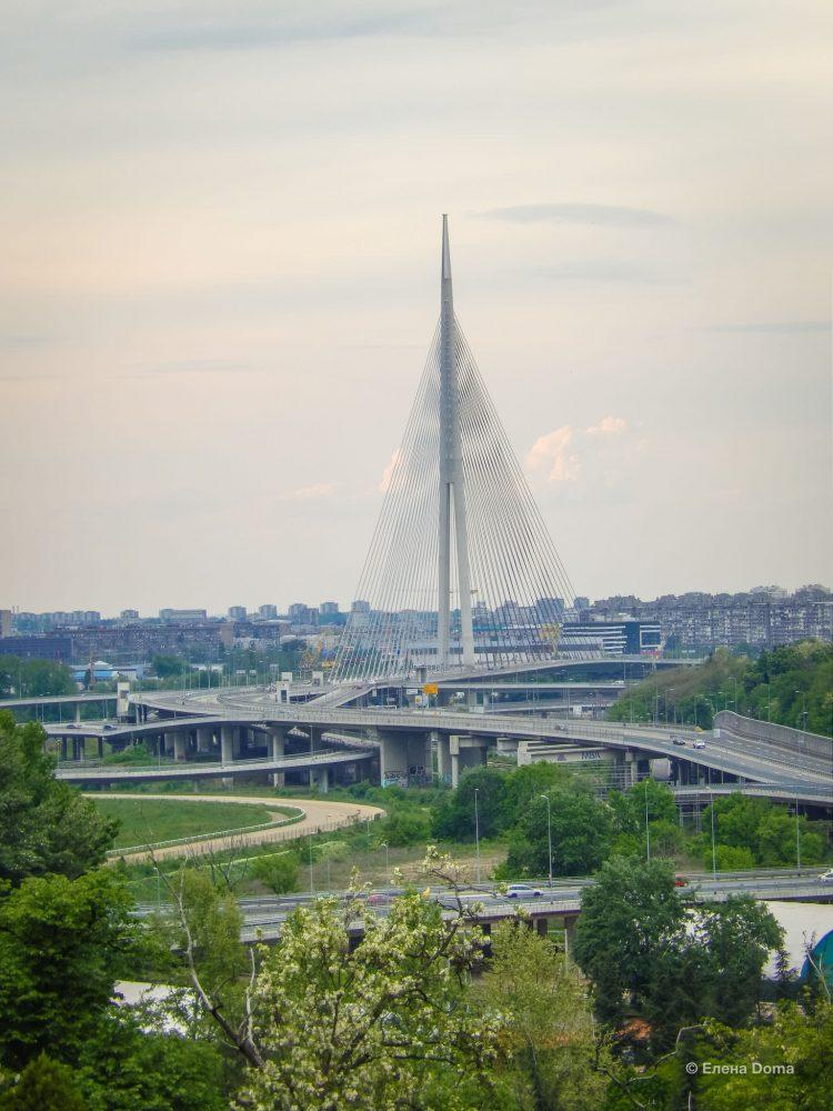 Вид на Новый Белград с Кошутньяка
