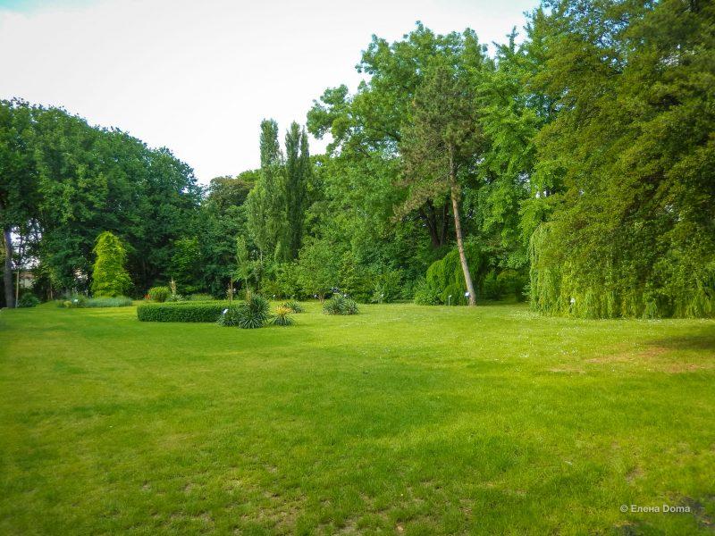 Картинка Ботанического сада