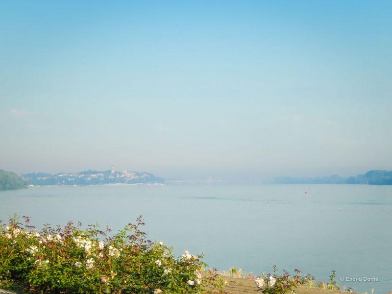 Вид на Земун с Нижнего Дорчола (берег Дуная)