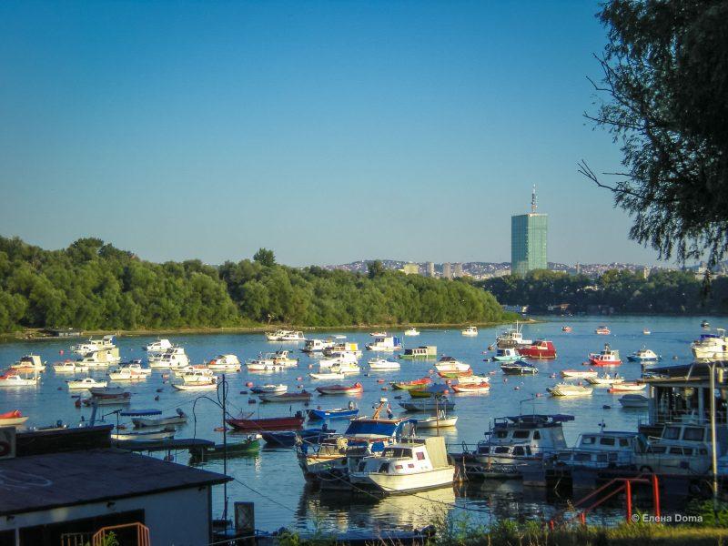 Лодочки и катера на Дунае