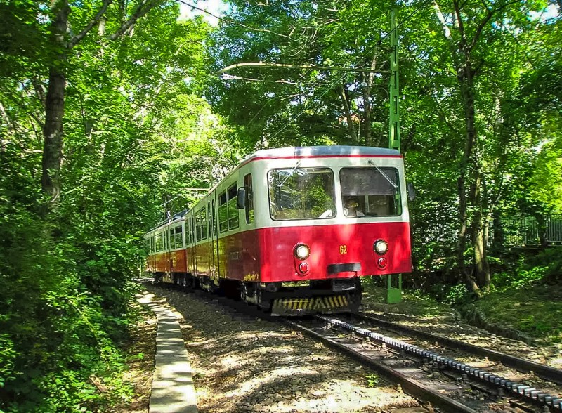 Зубчатая железная дорога