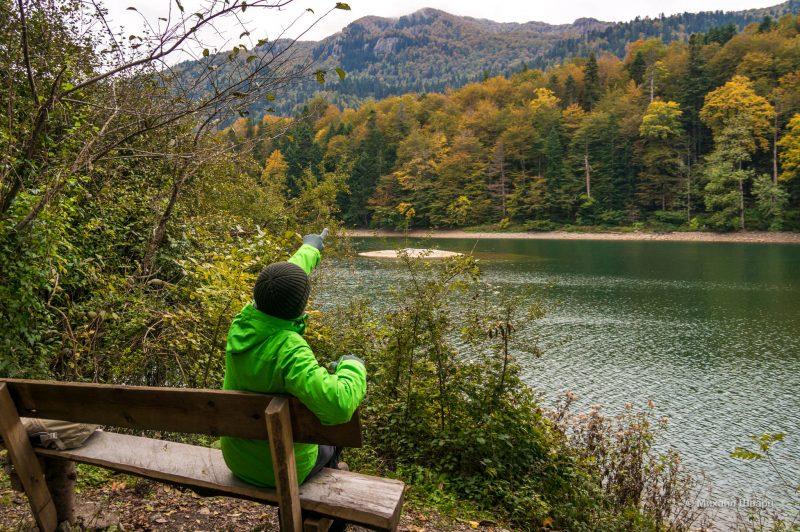 Осень в парке Биоградская гора
