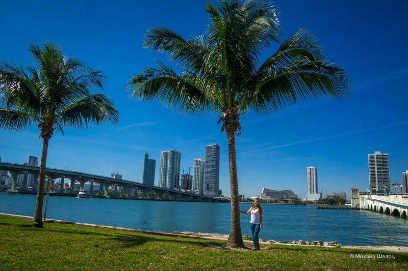 Первые впечатления о Майами Бич 30