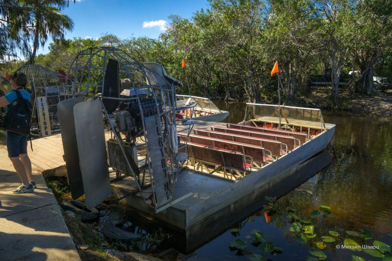 Смотрим аллигаторов в парке Everglades 1