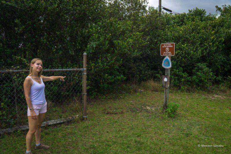Смотрим аллигаторов в парке Everglades 21