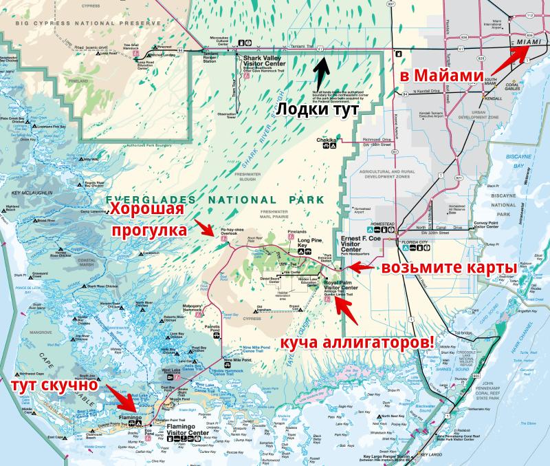 Смотрим аллигаторов в парке Everglades 7