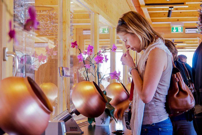 Оцените запахи, создающие «букет» готовой продукции