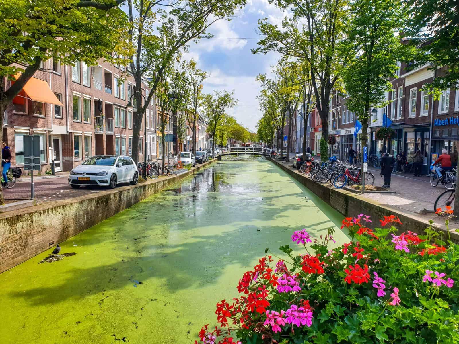 Делфт (Delft)