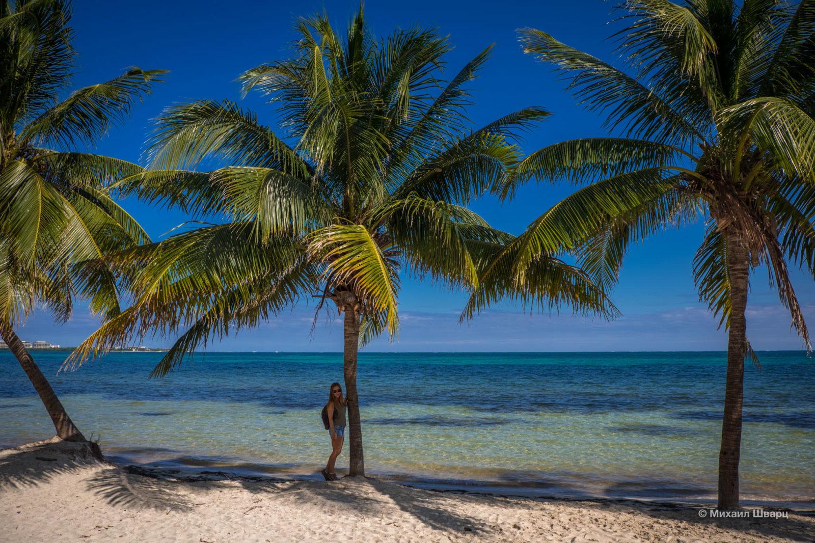 Лена и пальмы