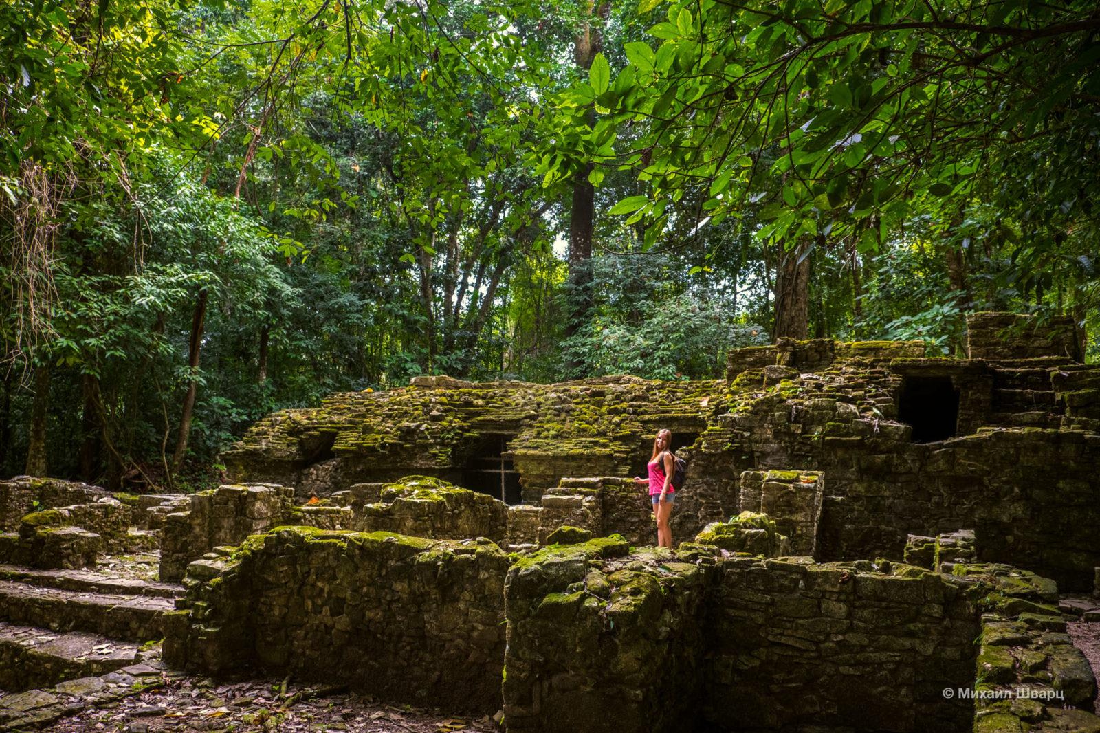 Развалины в лесу